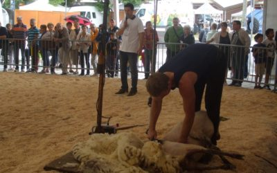 Festival de Brive (21/09/16)