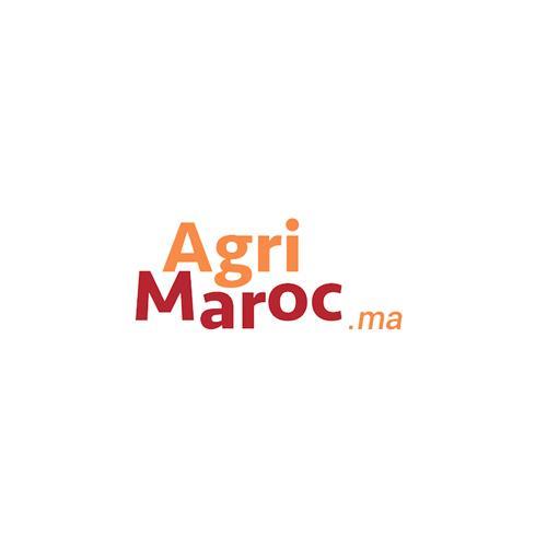AgriMaroc : Premier record de France de tonte de moutons.
