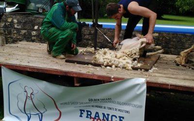 Foire à la laine : Festi'Nieul (11/06/16)